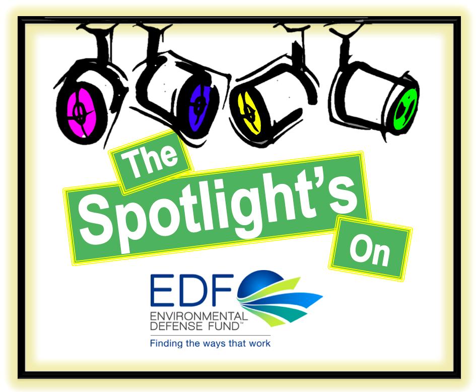 EDF Image