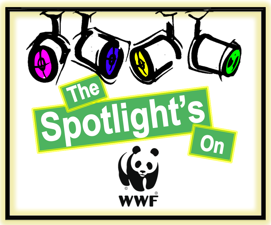 WWF Blog Post Image