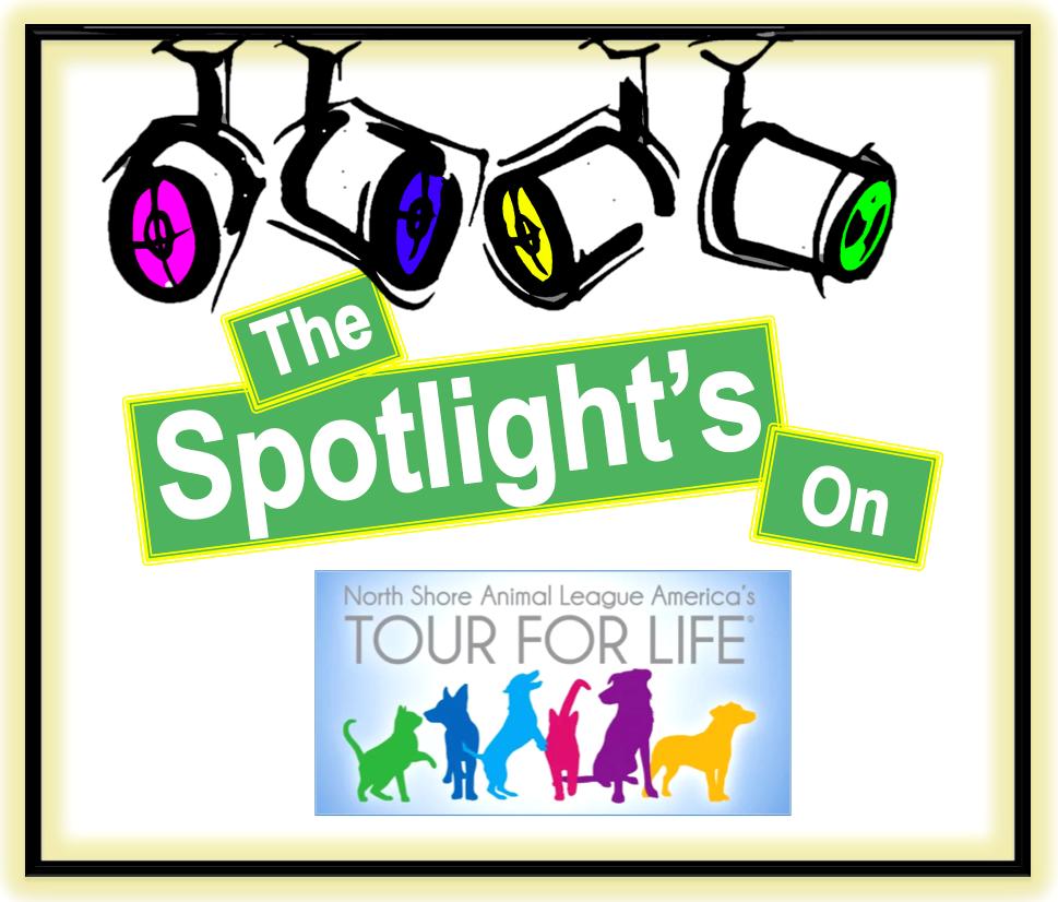 Client spotlight NSAL