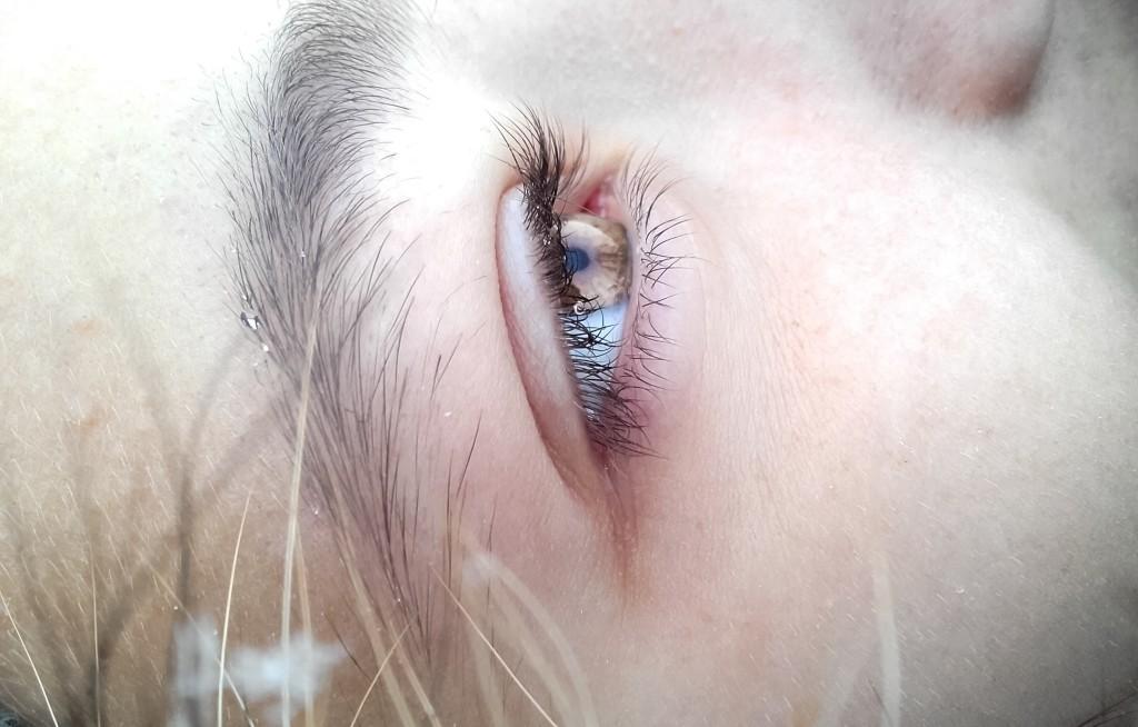 eye brain by Anita Kelsall via unsplash resized photo-1455542856035-b2b80c50f1b0